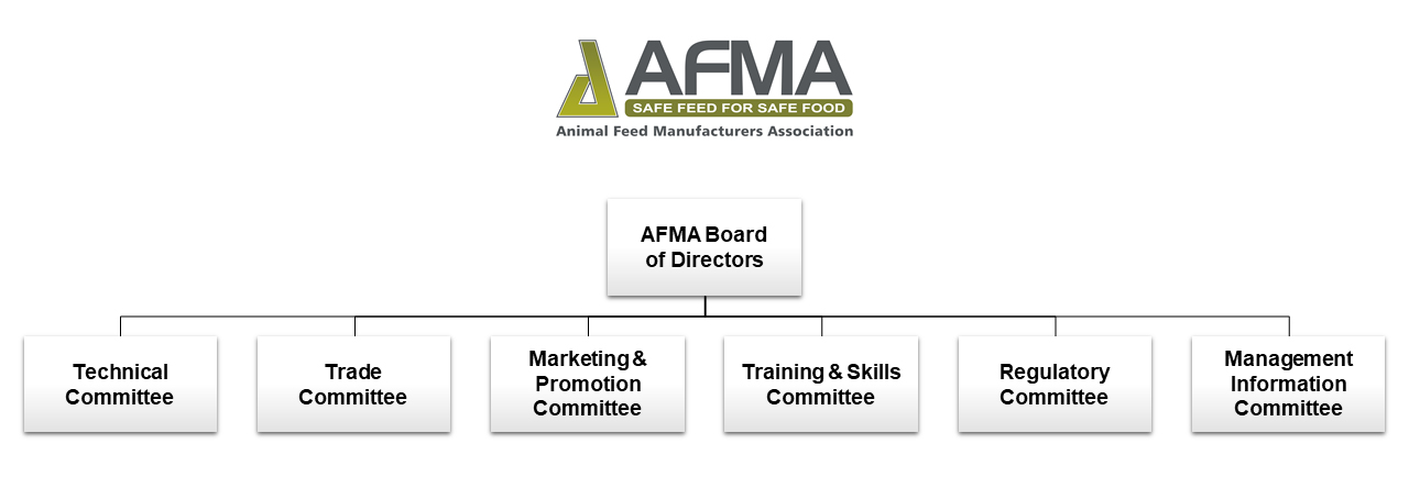 AFMA Committee Structure