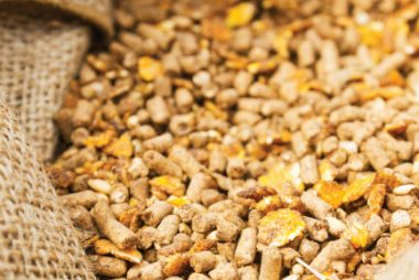 East African states remove animal feed tax